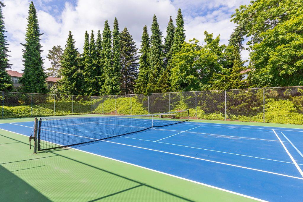 37 sports court 1-1